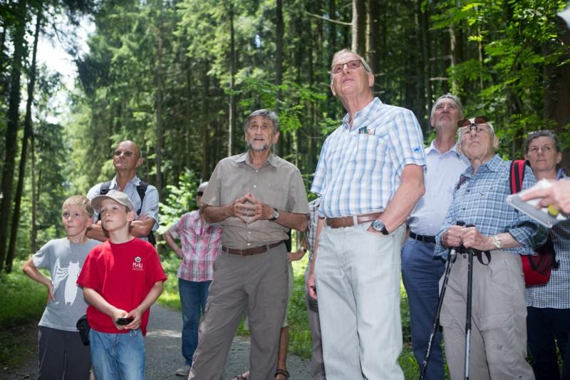 Zäme erläbe - Was gibt es denn im Gütschwald zu entdecken